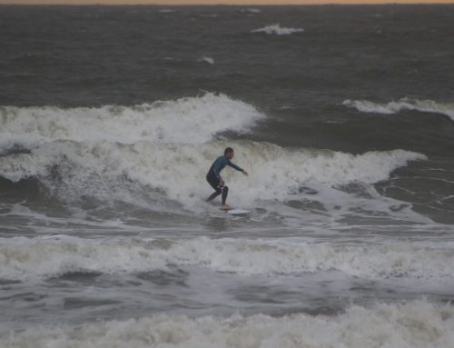 Monday November 12th Surf Report #1 Jacksonville FL
