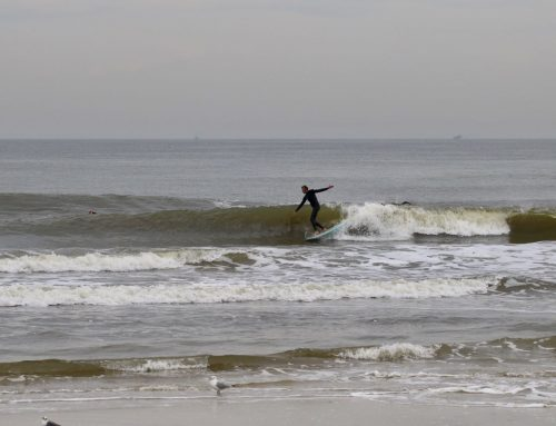 Friday February 15th Surf Report #2 Jacksonville FL