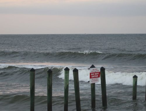Tuesday February 19th Surf Report #1 Jacksonville FL