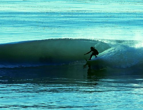 Clean Waters?  How healthy is the water we surf in?