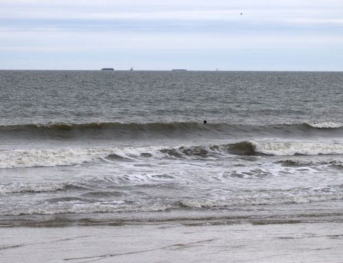 Saturday March 16th Surf Report #1 & 2 Jacksonville FL
