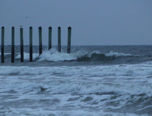 Sunday March 17th Surf Report #1 Jacksonville FL