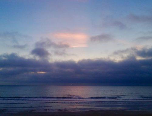Jacksonville Fl Surf Report #1 Tuesday October 22nd