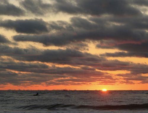 Jacksonville Fl Surf Report #1 Monday October 21st