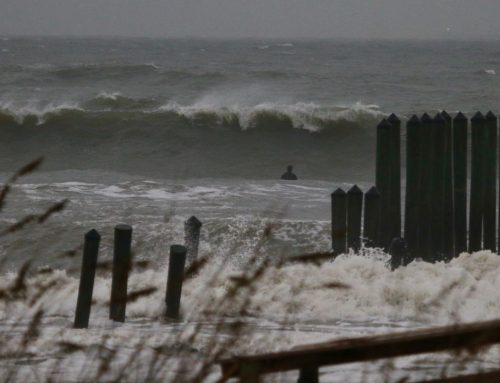 Jacksonville Fl Surf Report #1 Thursday November 14th