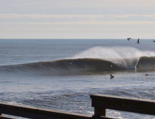 Jacksonville Fl Surf Report #3 & 4 Monday November 18th