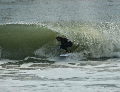 January Surf Recap by Ivy Scott