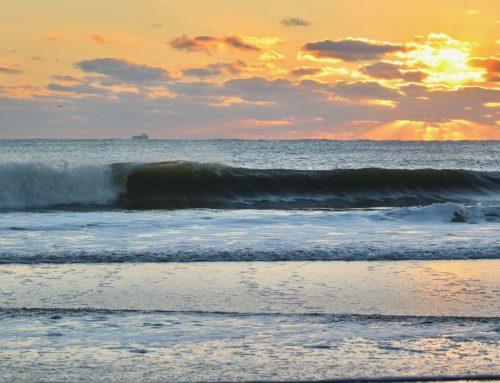 Jacksonville Fl Surf Report #1 Monday January 20th