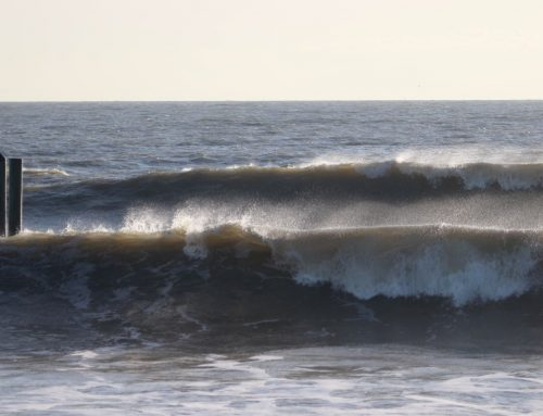 Jacksonville Fl Surf Report #2 Sunday February 23rd