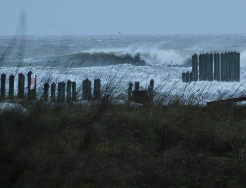 Jacksonville Fl Surf Report #1 Friday February 21st