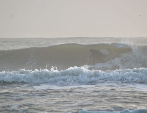 Jacksonville Fl Surf Reports #1 & 2 Sunday February 16th