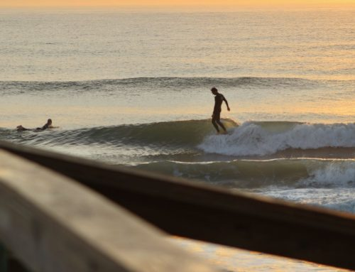 Jacksonville Fl Surf Report #1 Wednesday February 19th