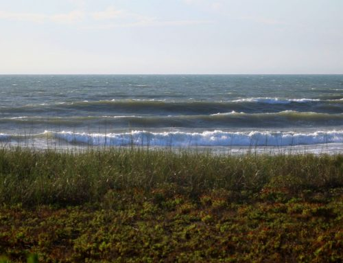 Jacksonville Surf Report #2 & 3 Saturday May 23rd