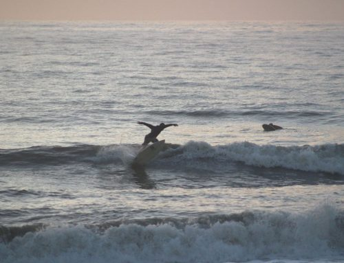 Jacksonville Surf Report #1 Friday September 25th