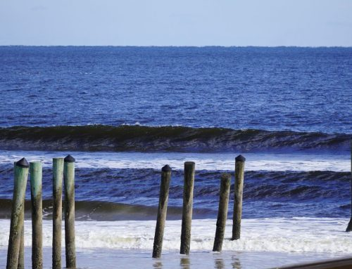 Jacksonville Surf Report #2 Wednesday December 2nd